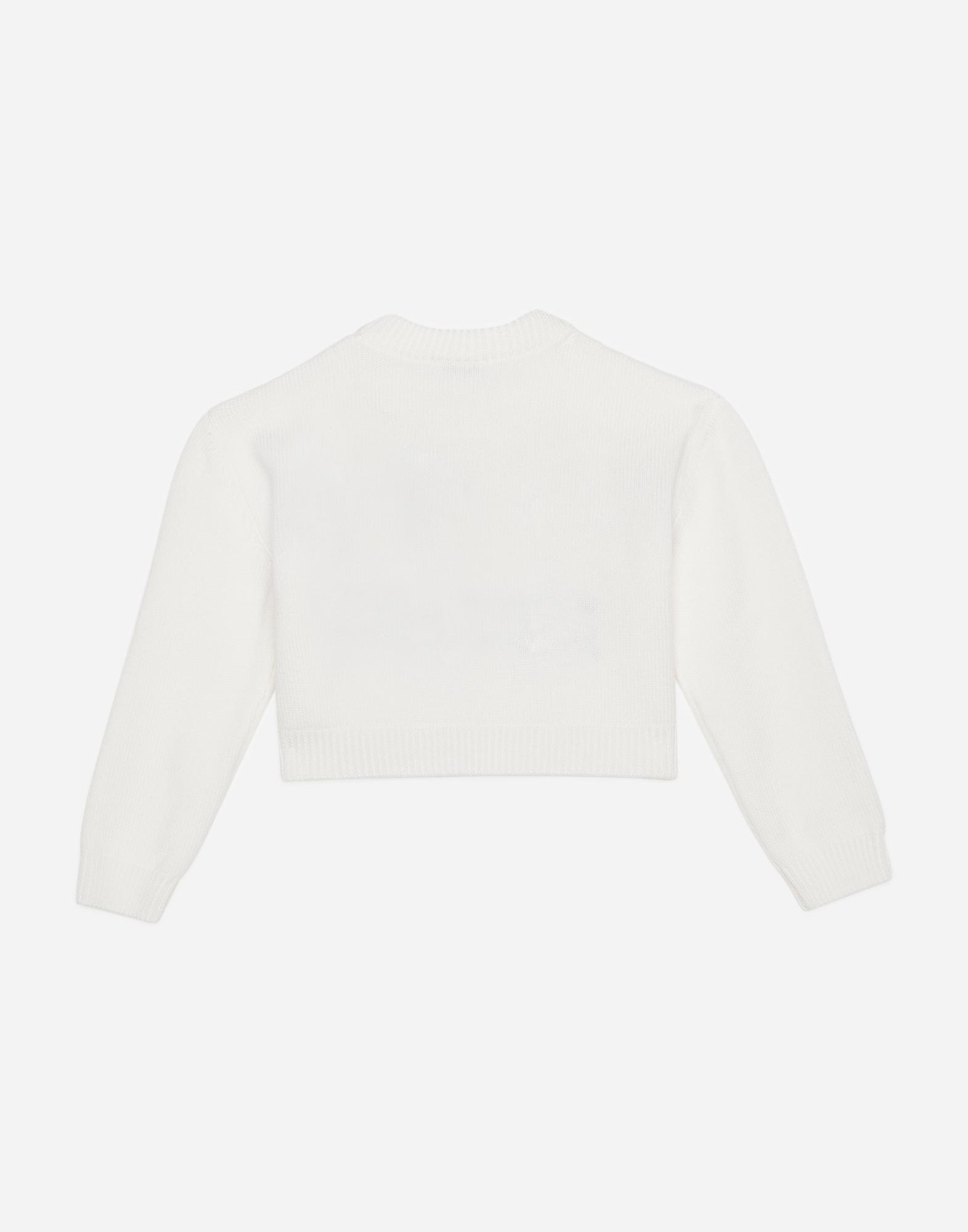 Dolce & Gabbana CREW NECK SWEATER WITH INLAY